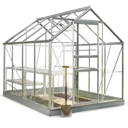 Greenhouse Special Offers