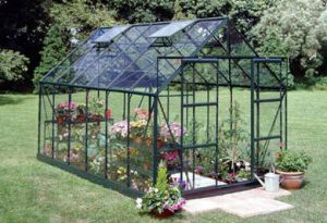 Halls Magnum 12x8 Greenhouse Forest Green