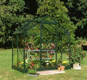 Halls Popular 4x6 Greenhouse Forest Green