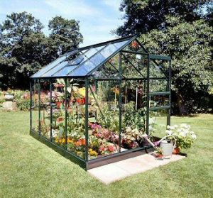 Popular 8x6 Greenhouse Forest Green