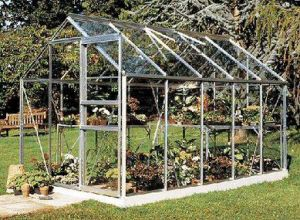 Popular 10x6 Greenhouse Silver Aluminium
