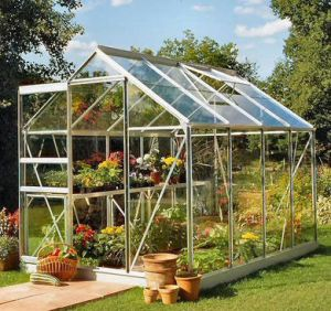 Popular 8x6 Greenhouse Silver Aluminium